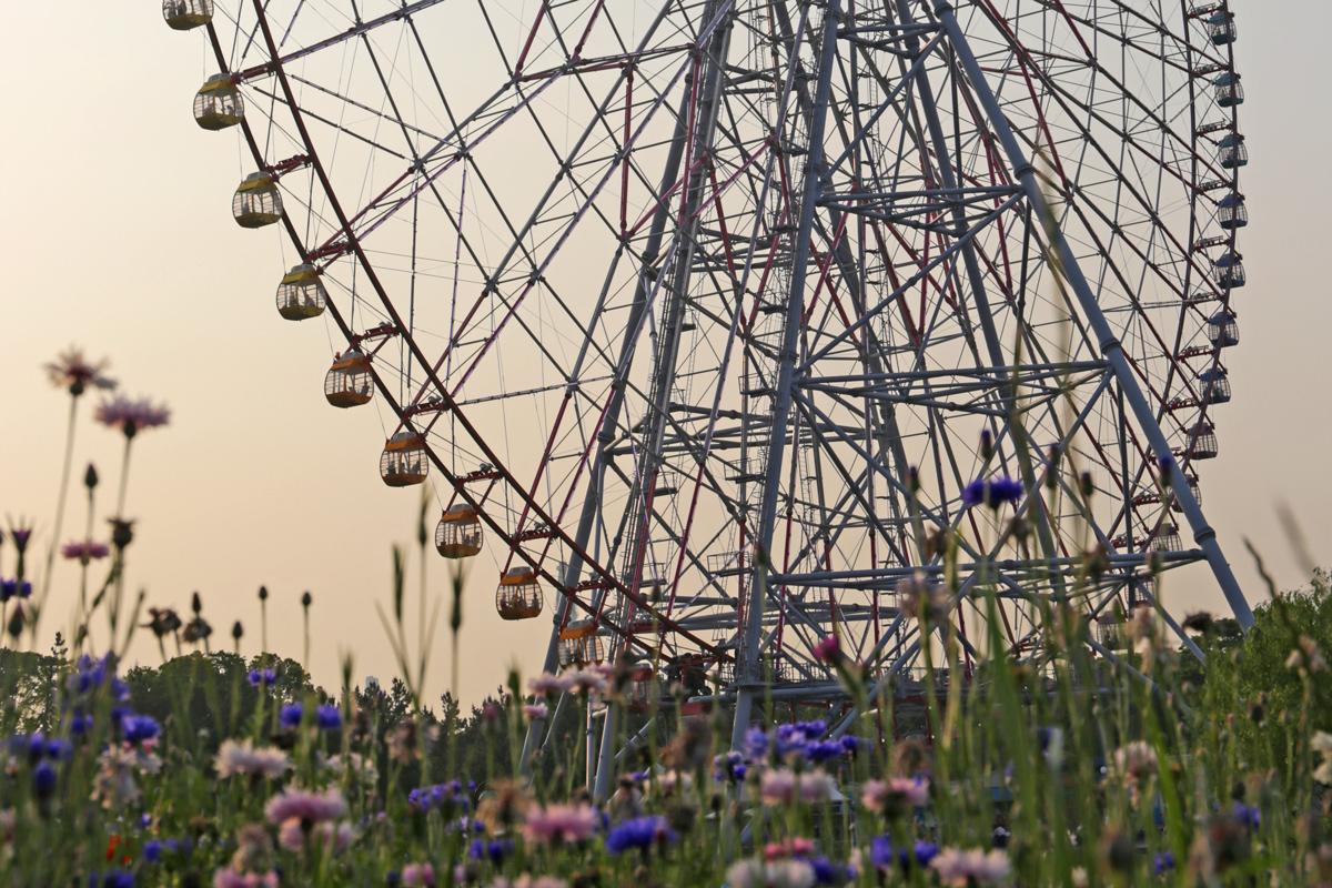 Tokyo Giant Ferris Wheel
