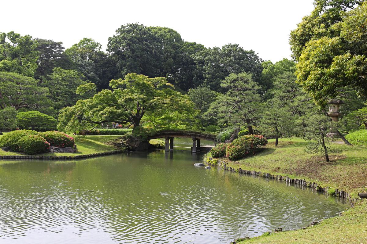 Rikugien Garden Tokyo in Spring