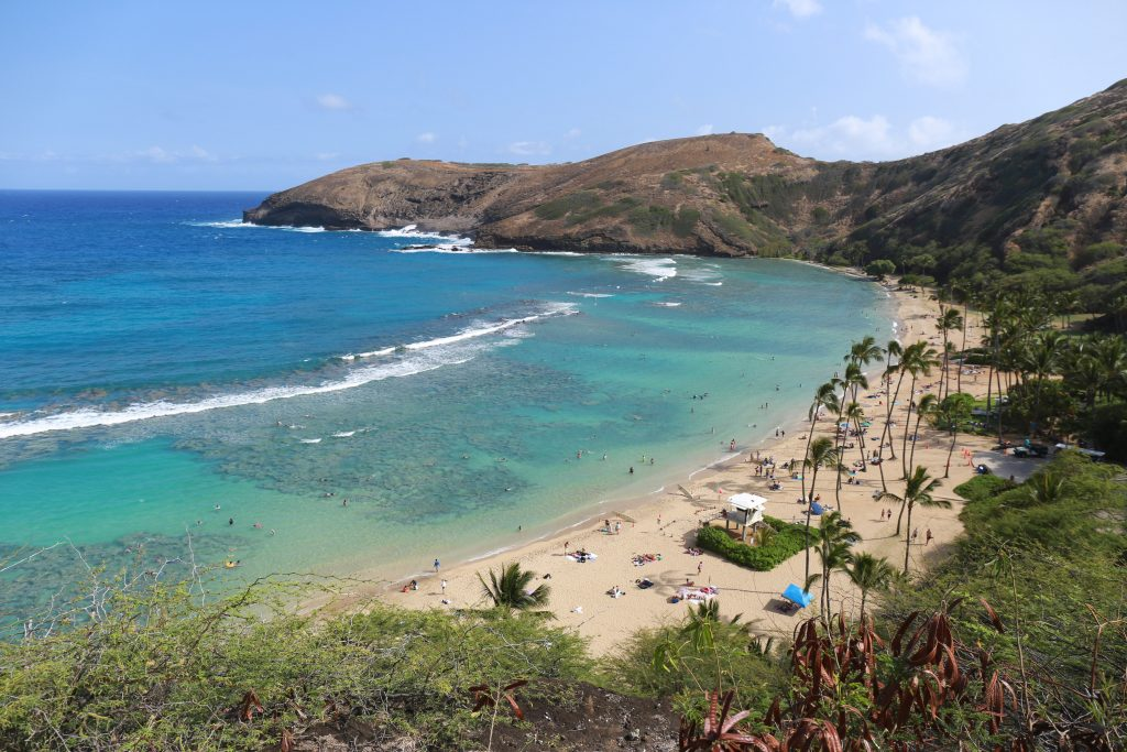 Hanauma Bay from top