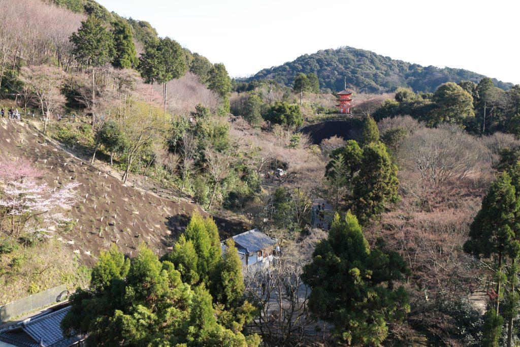 Kiyomizudera 4