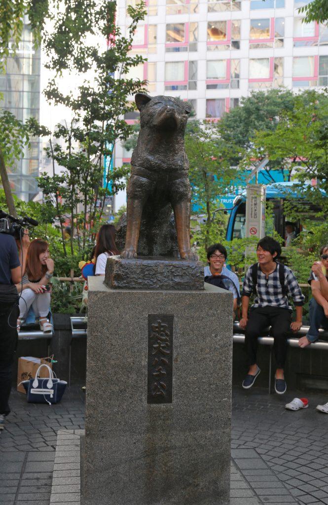 Hachiko1