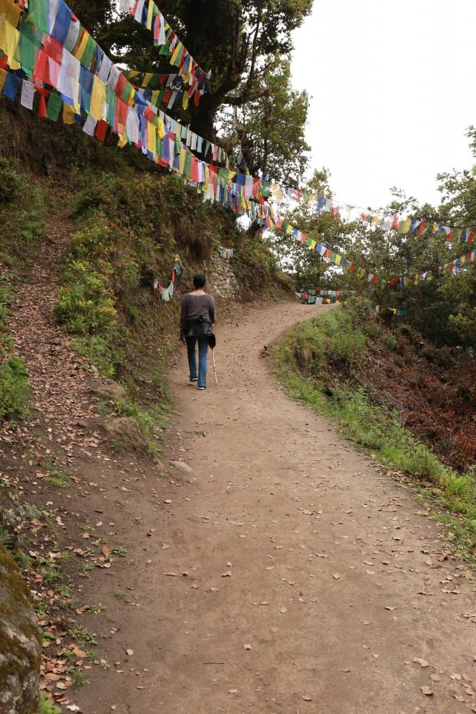 Path to Tiger Nest