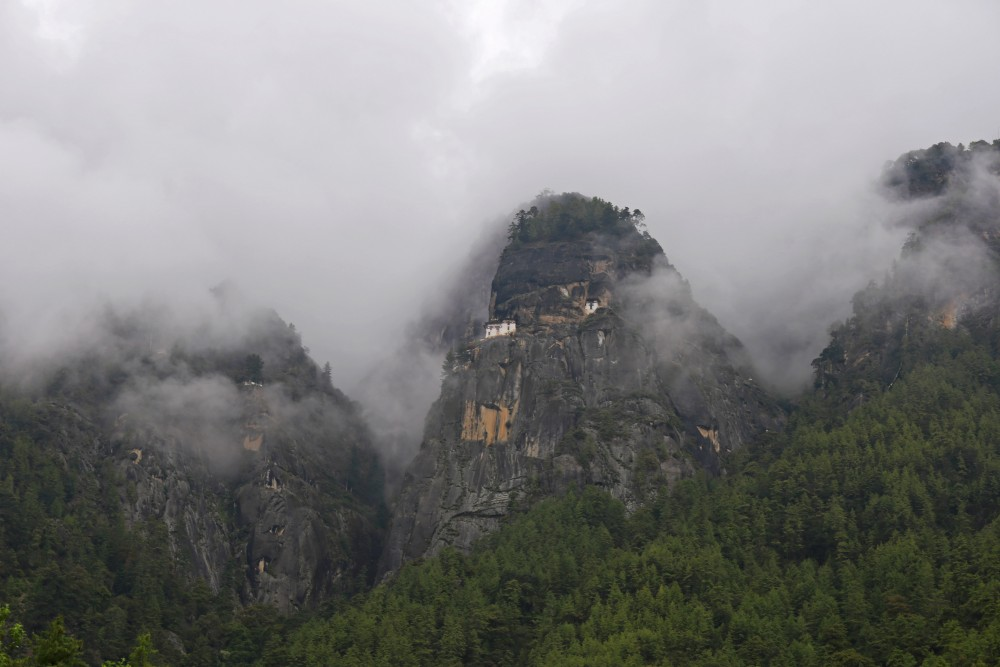 Tiger Nest Cloud