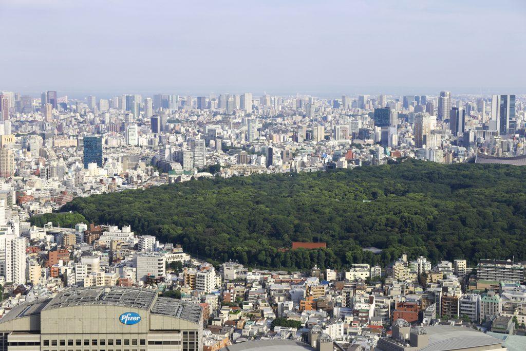 Tokyo from Metropolitan Government Builiding Shinjuku