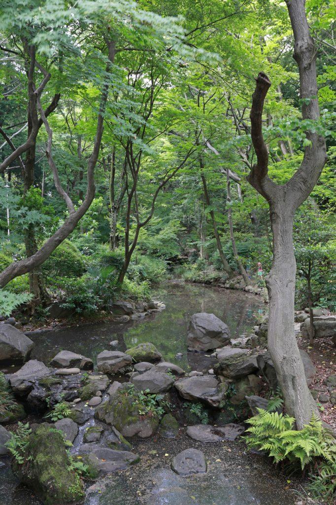 Arisugawa Park Tokyo