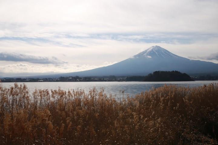 Mount-Fuji-from-Lake-Kawaguchi