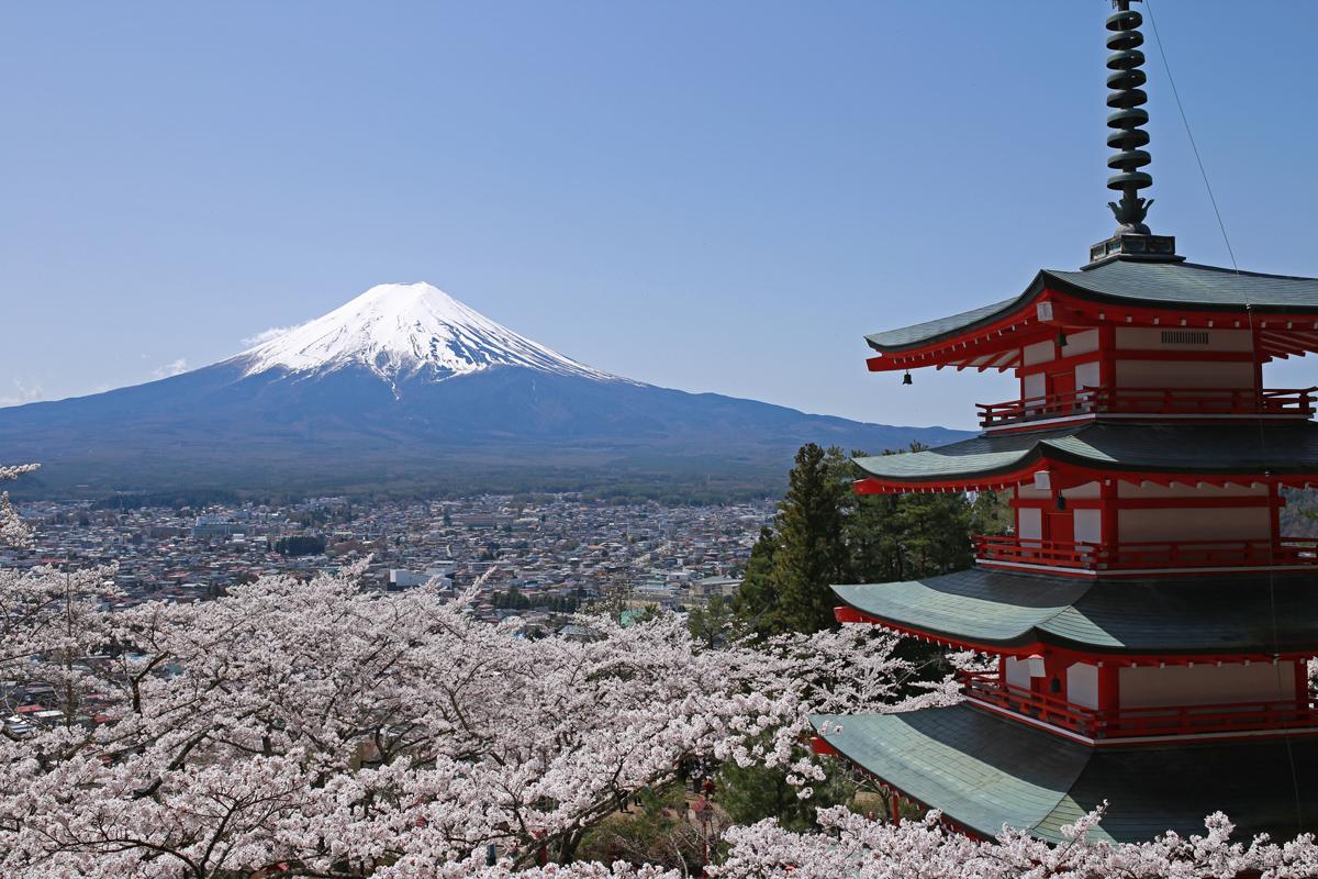 Arakurayama Sengen Park Chureito Sakura Mt Fuji
