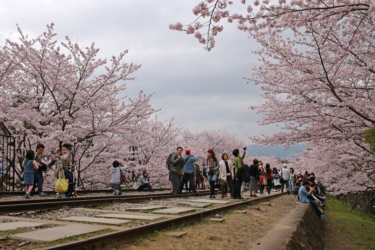 Kaege Incline in Spring