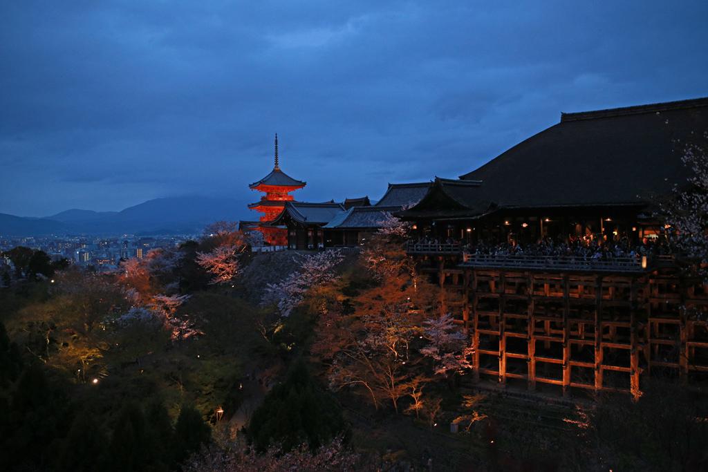 Kiyomizu-dera Temple in Cherry Blossom Season