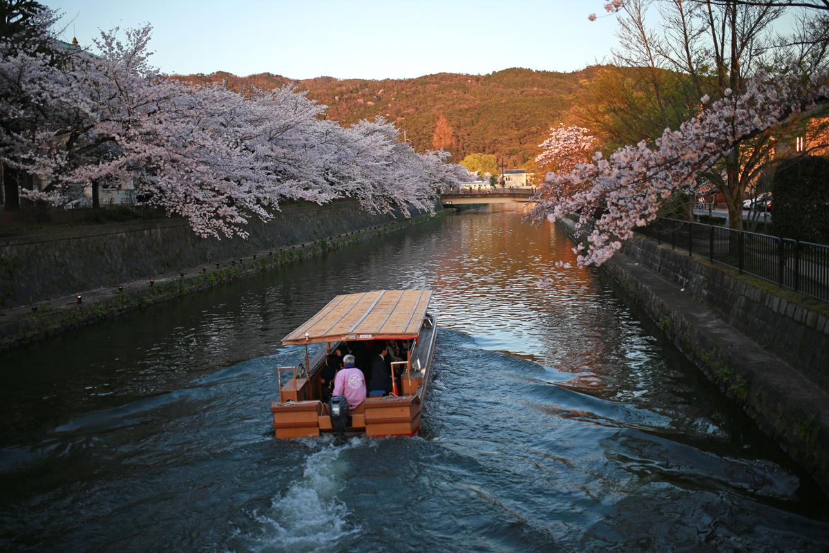 Okazaki Canal in Spring