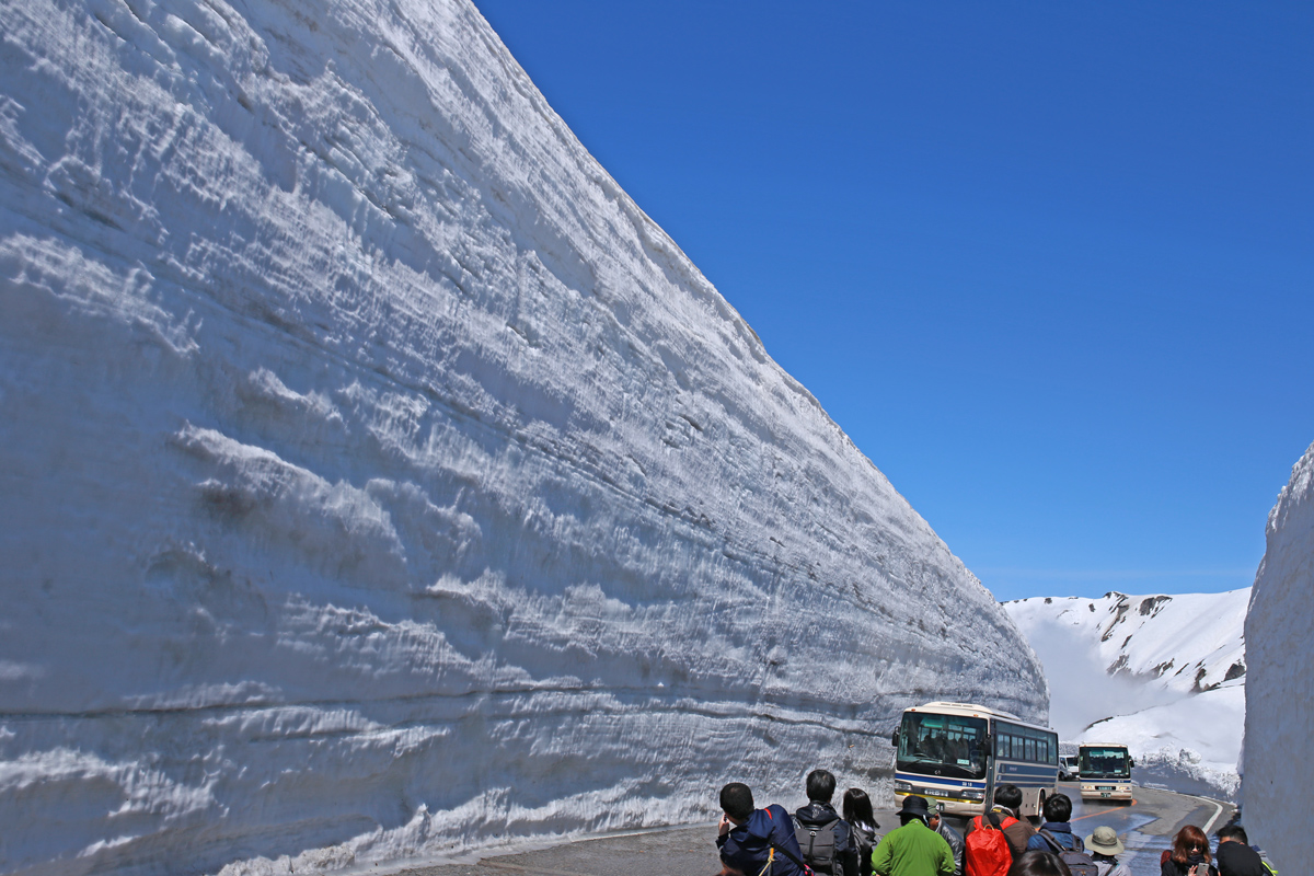 Snow Wall Walk Tateyama