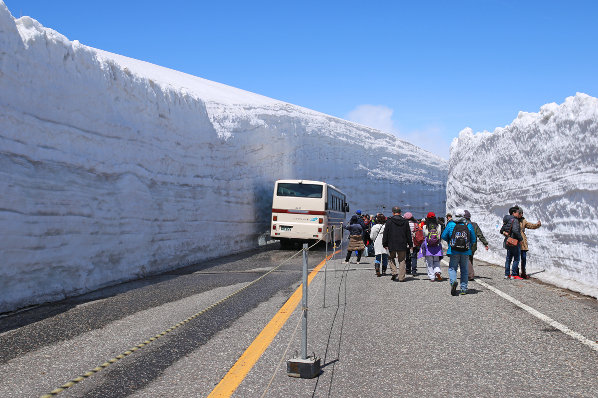 Walking along Snow Walls Tateyama