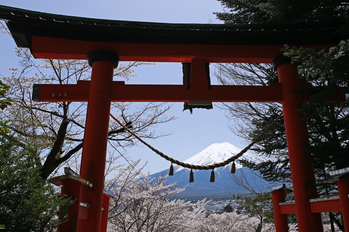 Torii-and-Fuji