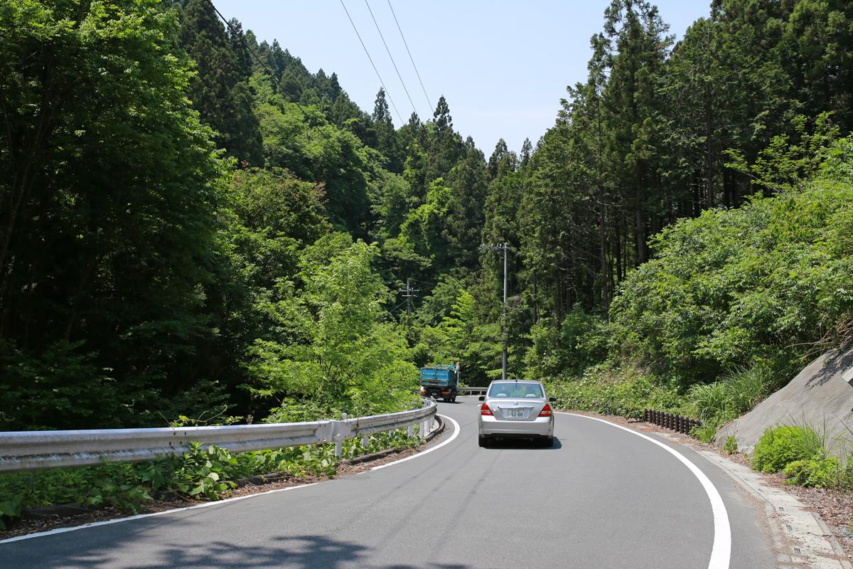Road-to-Poppy-Garden