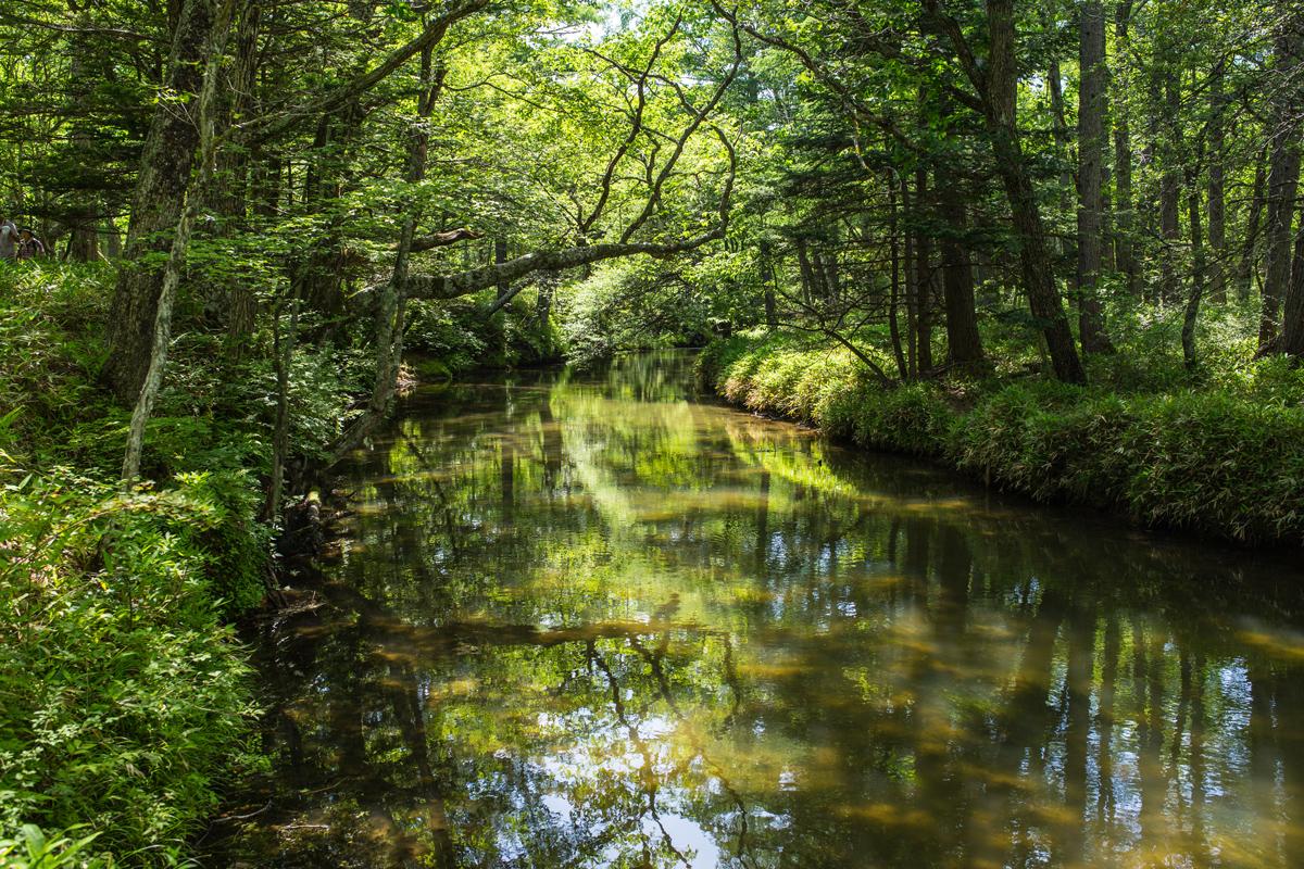 Senjogahara Trail Nikko