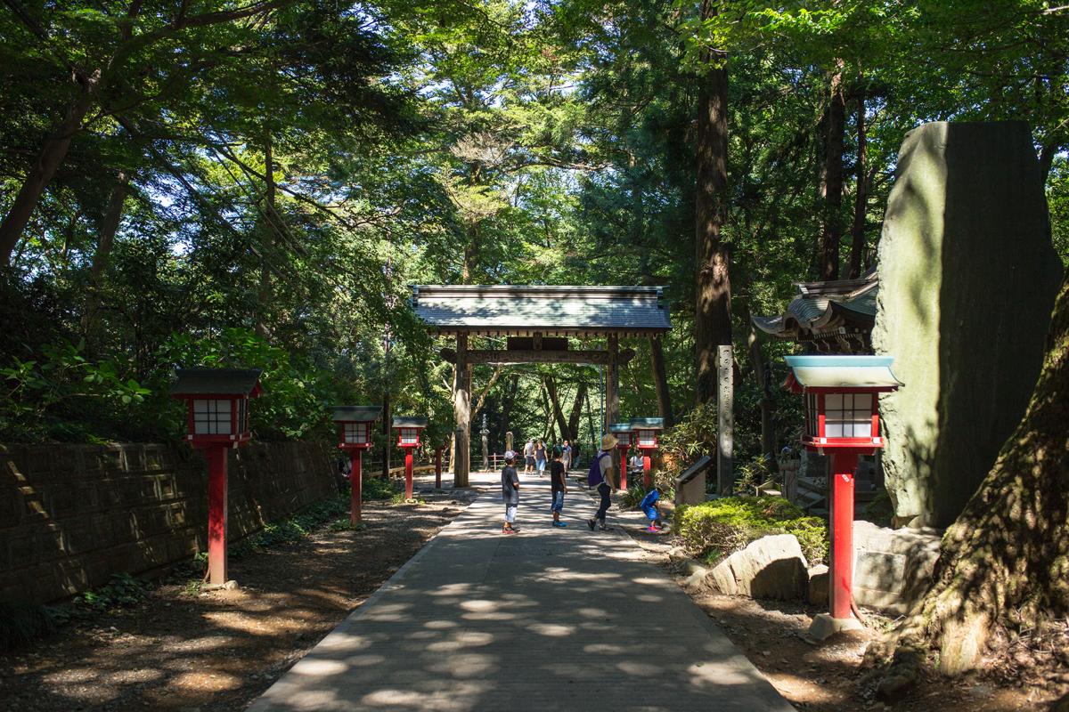Day Trip to Mount Takao