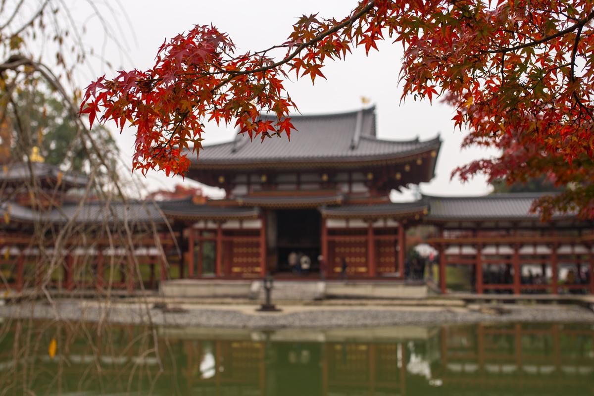 Autumn Foliage in Kyoto: Byodo-in Temple