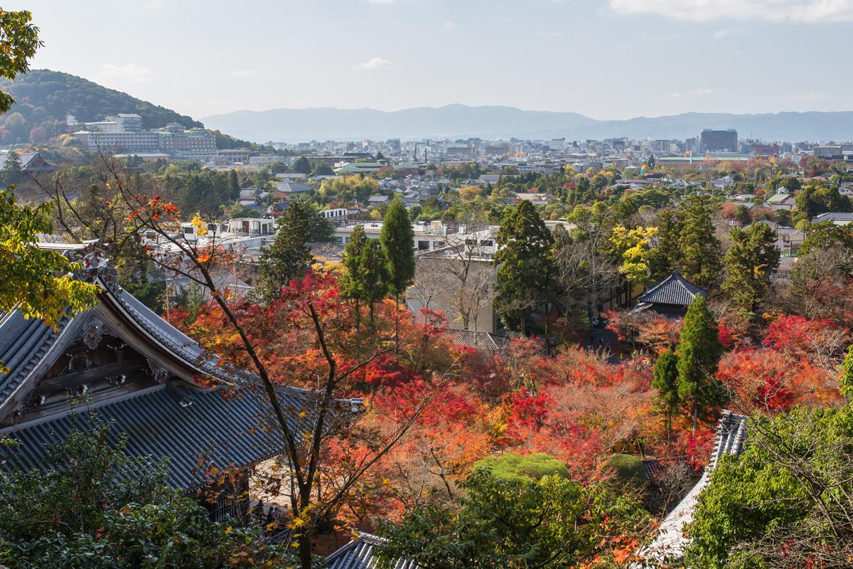 Autumn Foliage in Kyoto: Eikando Zenrin-ji