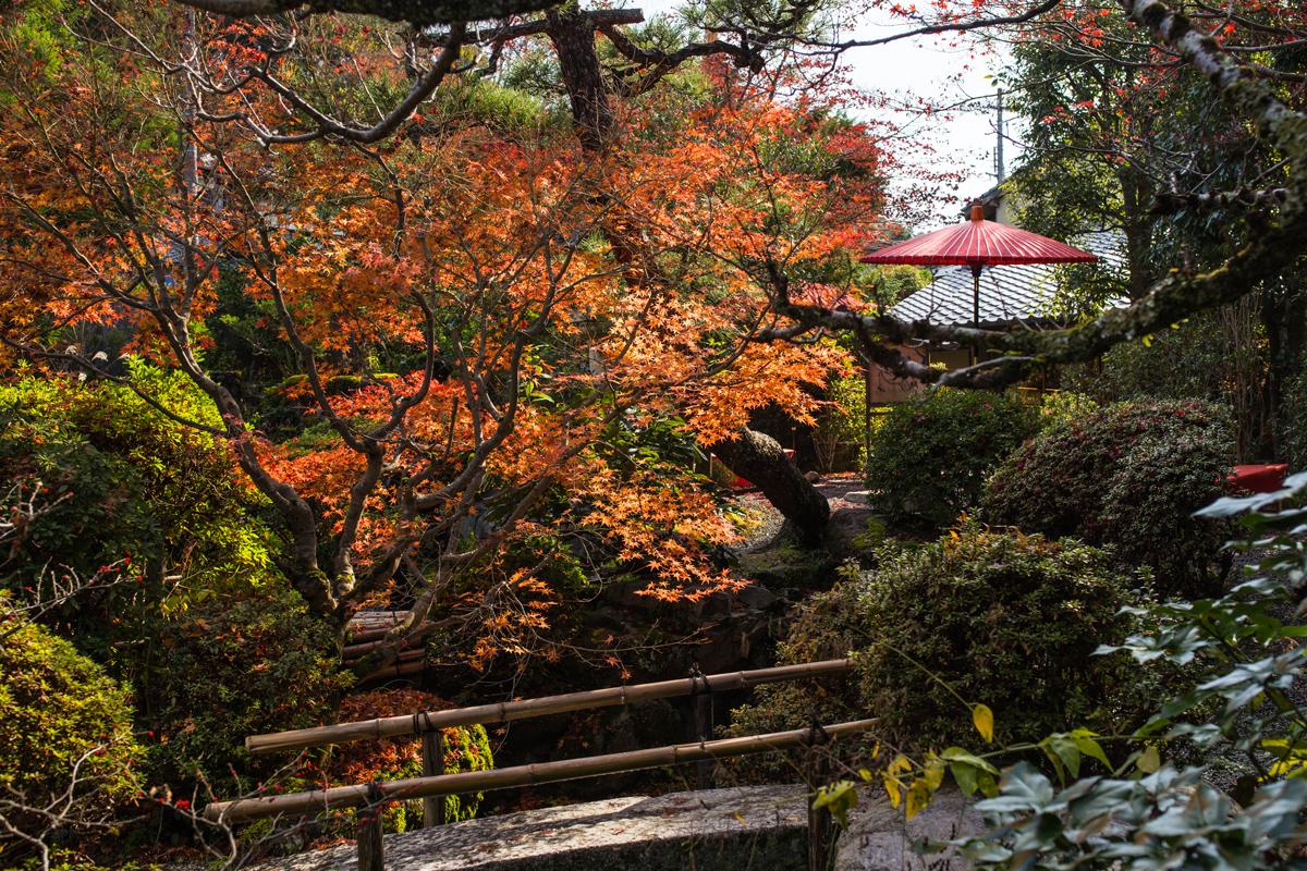 Yojiya Cafe Ginkakuji in Autumn