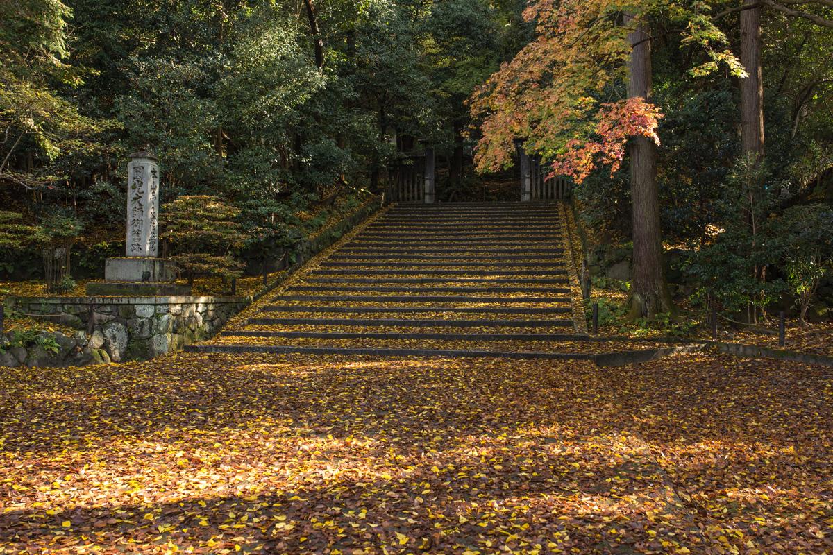 Autumn Foliage in Kyoto: Honen-in Temple