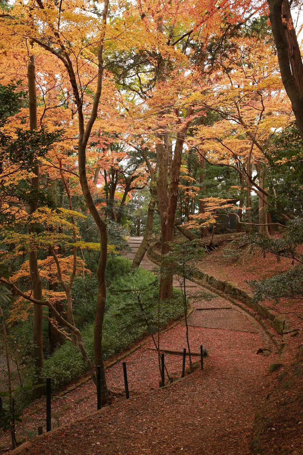 Naritasan Park in Autumn