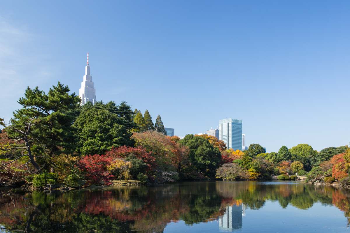 Shinjuku Gyoen in Autumn