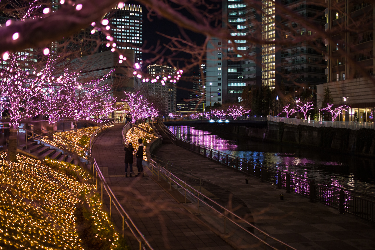 Meguro River Illumination at Gotanda