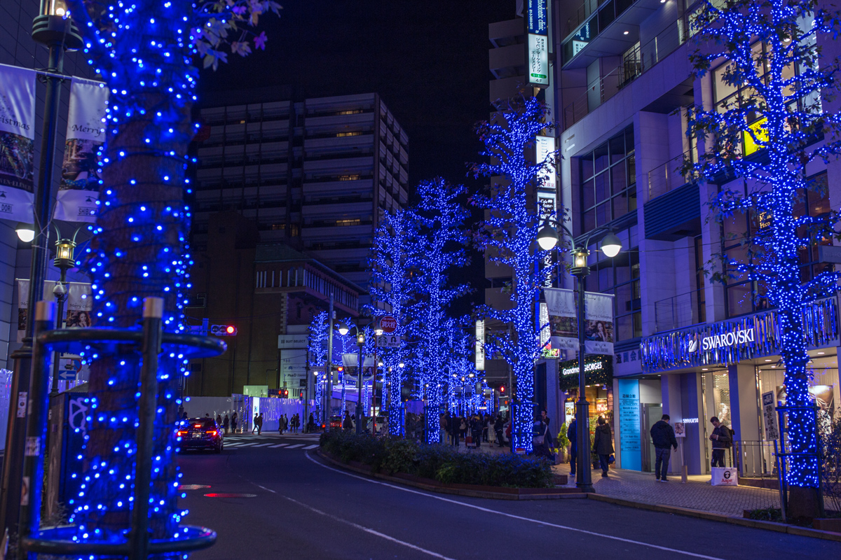 Shibuya Koen Street Winter Illumination