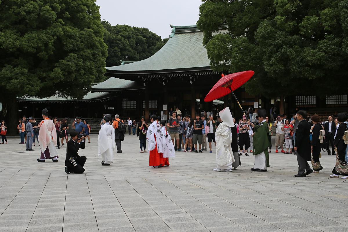 Wedding Ceremony at Meiji Jingu Shrine