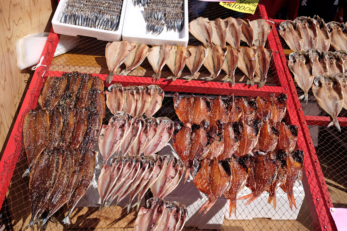 Fish in Kawazu Cherry Blossom Festival