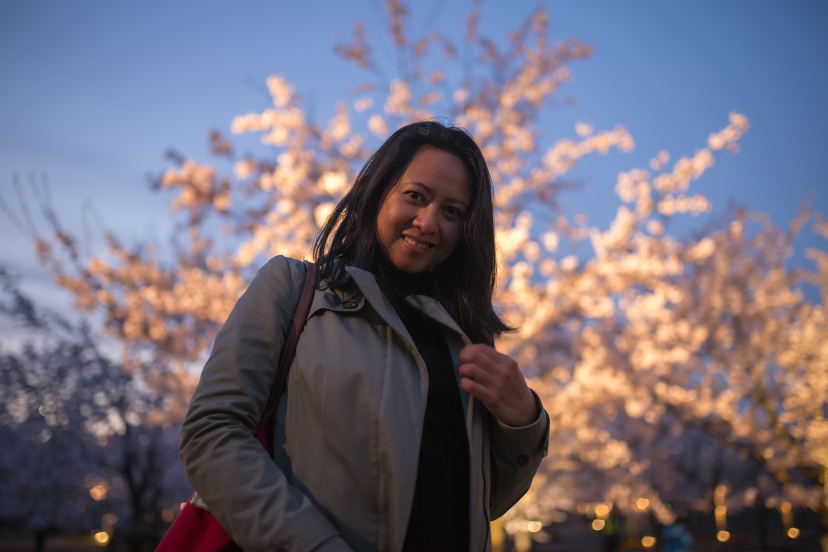 Makuhari Sakura Hiroba