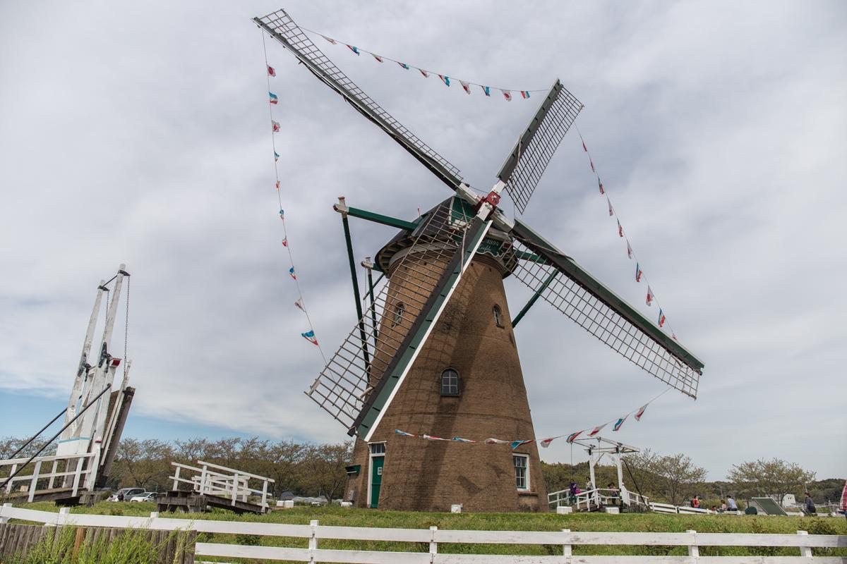 Windmill Chiba
