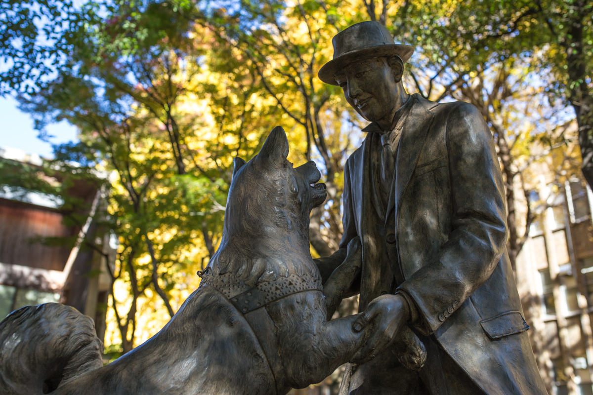 Hachiko Reunion Statue at University of Tokyo