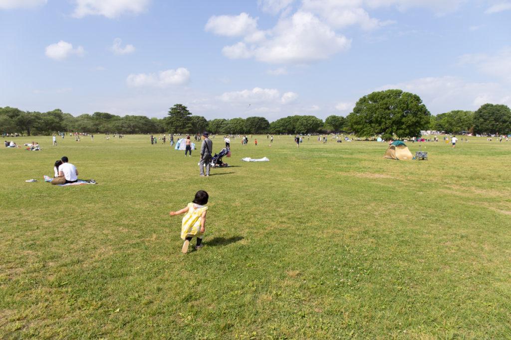 Showa Kinen Koen Field