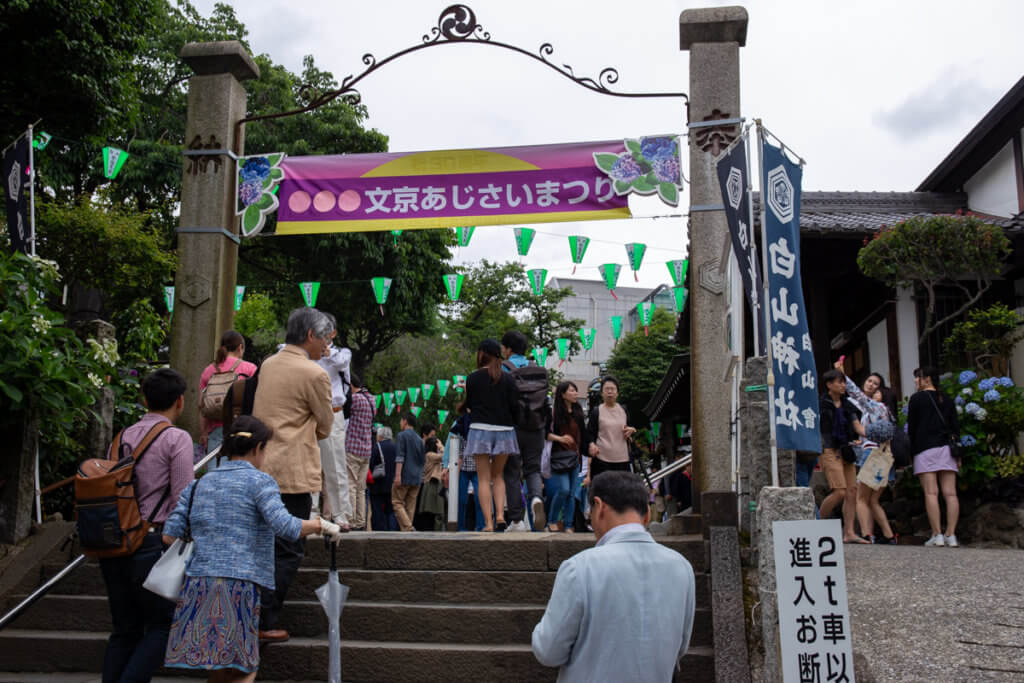 Hakusan Shrine Festival