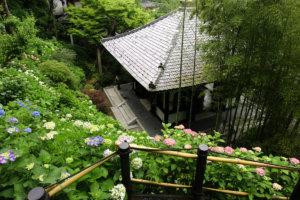 Kamakura Hasedera Temple