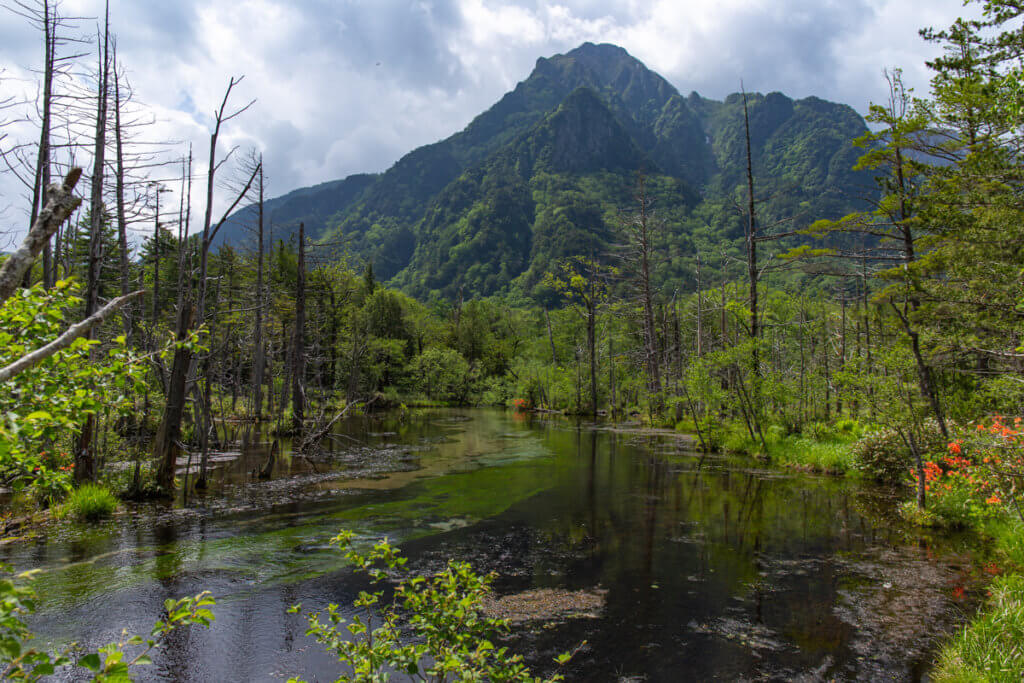 Dakesawa Marsh Kamikochi