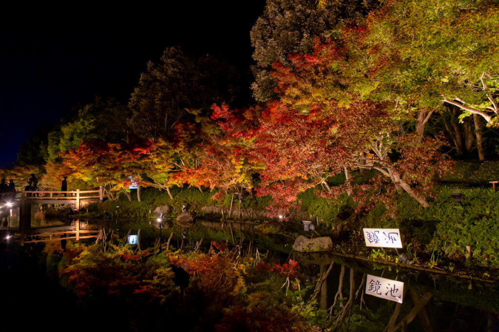 Autumn Foliage Nabana no Sato