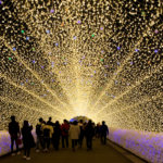 Nabana no sato Illumination Light Tunnel