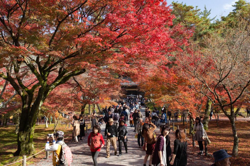 Nanzenji Crowd in Autumn