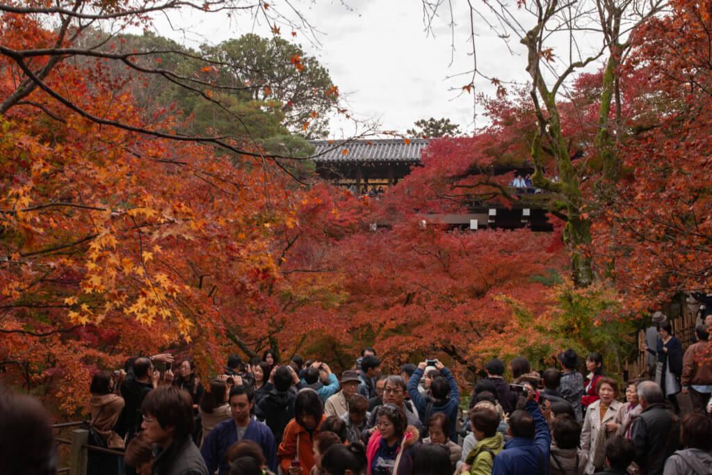 Tofukuji Crowd